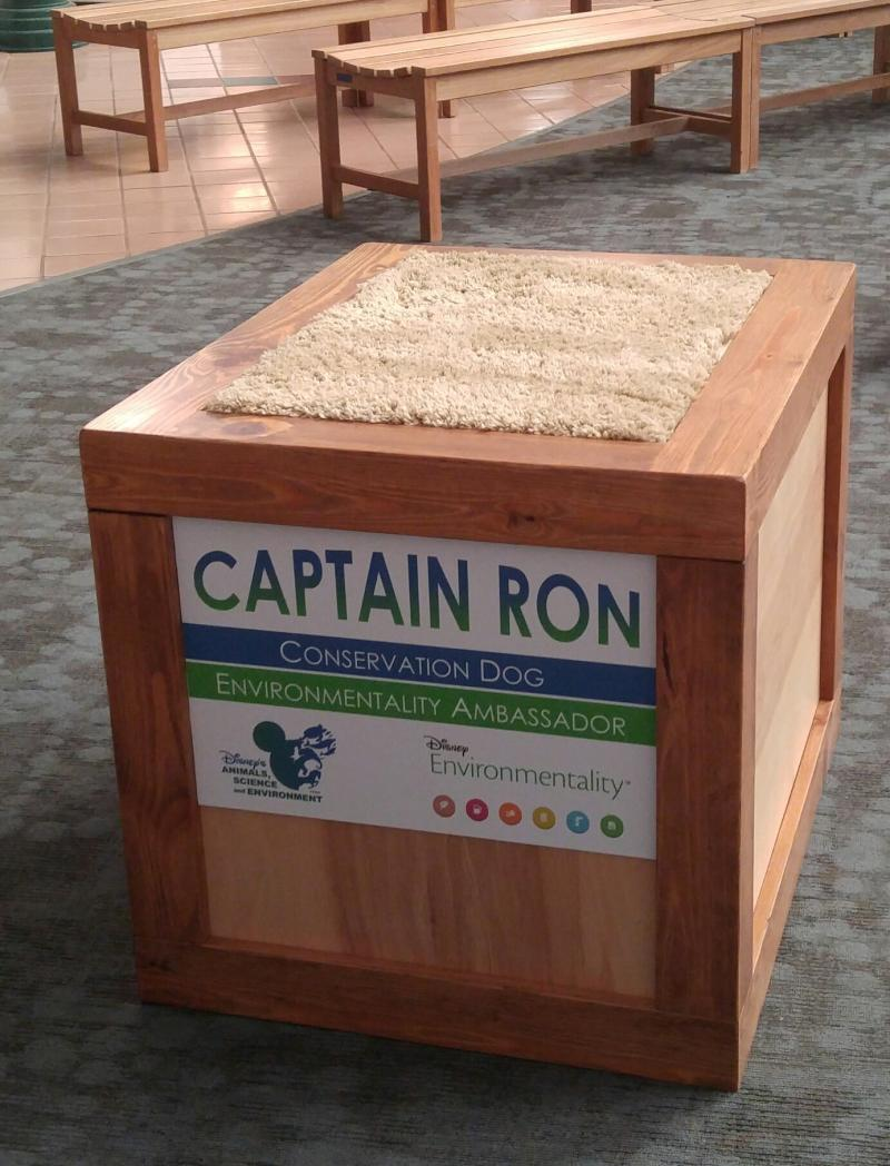 Capt Ron Box for Epcot 2017